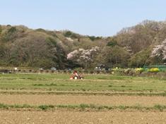 Let's Visit Jike-hurusato Village! @ Jike-hurusato Village!